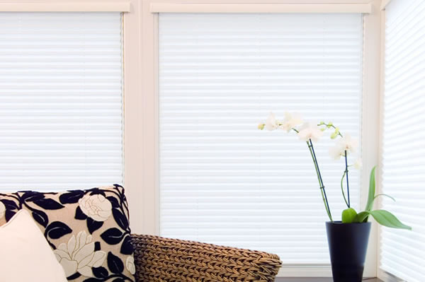 Intu Pleated Blind