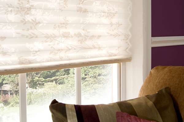 derby pleated blinds